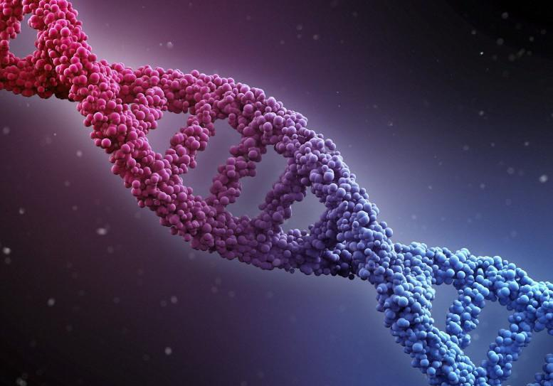 An image of DNA