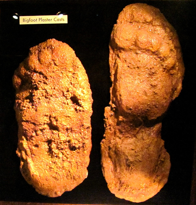 bigfoot-plaster-casts