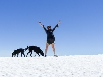 Mary and the Labradors!