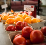 Tomatoes from Brewster