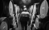 Often lined with oak barrels full of wine