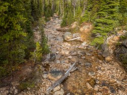 Cutthroat Creek near the trailhead