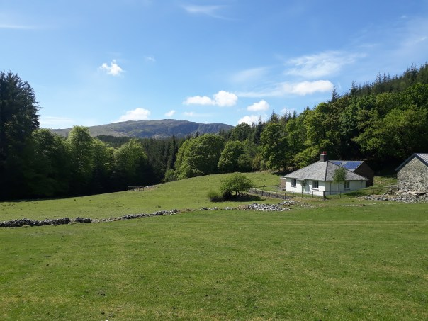 A sunny view of the fields surrounding this Coed y Brenin holiday accommodation at Maes-yr-eglwys-wen.