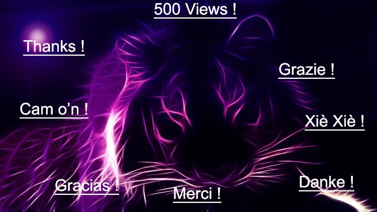 500 views ! Thanks everybody !