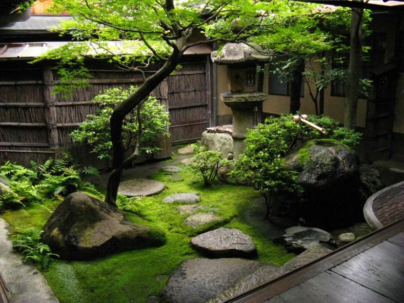 jardin de thé,