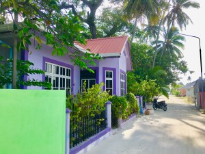 Affordable Peace and Quiet on the Maldives
