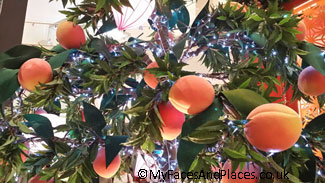 Chinese Peaches – symbol of Good Health and Long life