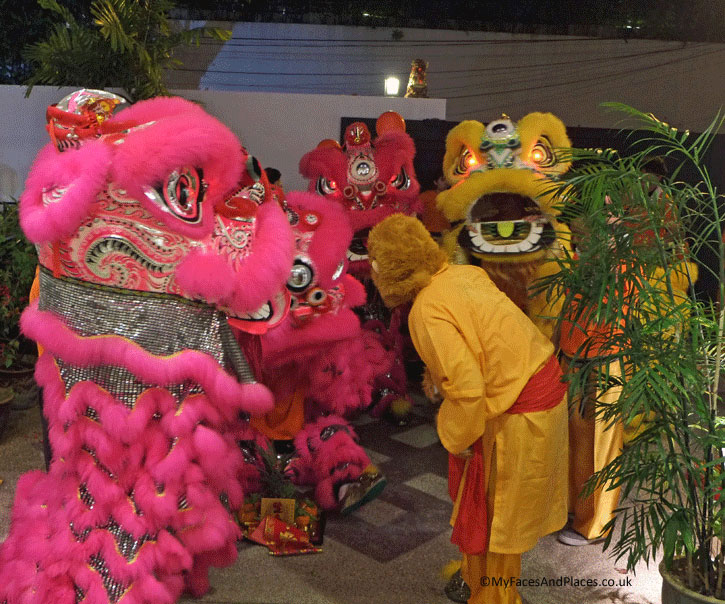 The monkey is now briefing the Chinese lions for the dance to bring in the auspicious energy of the Chinese New Year. This is part of the Chinese New Year Celebrations.