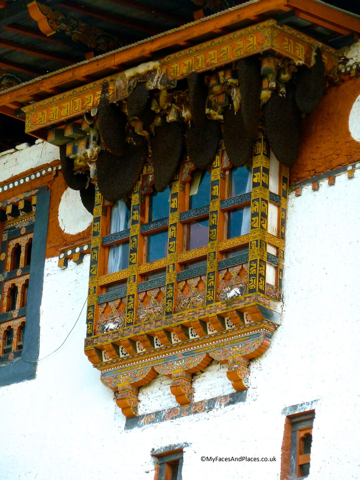 An amazing natural phenomenon of bee hives nesting in Punakha Dzong protected by the monastery - Bhutan the Beautiful
