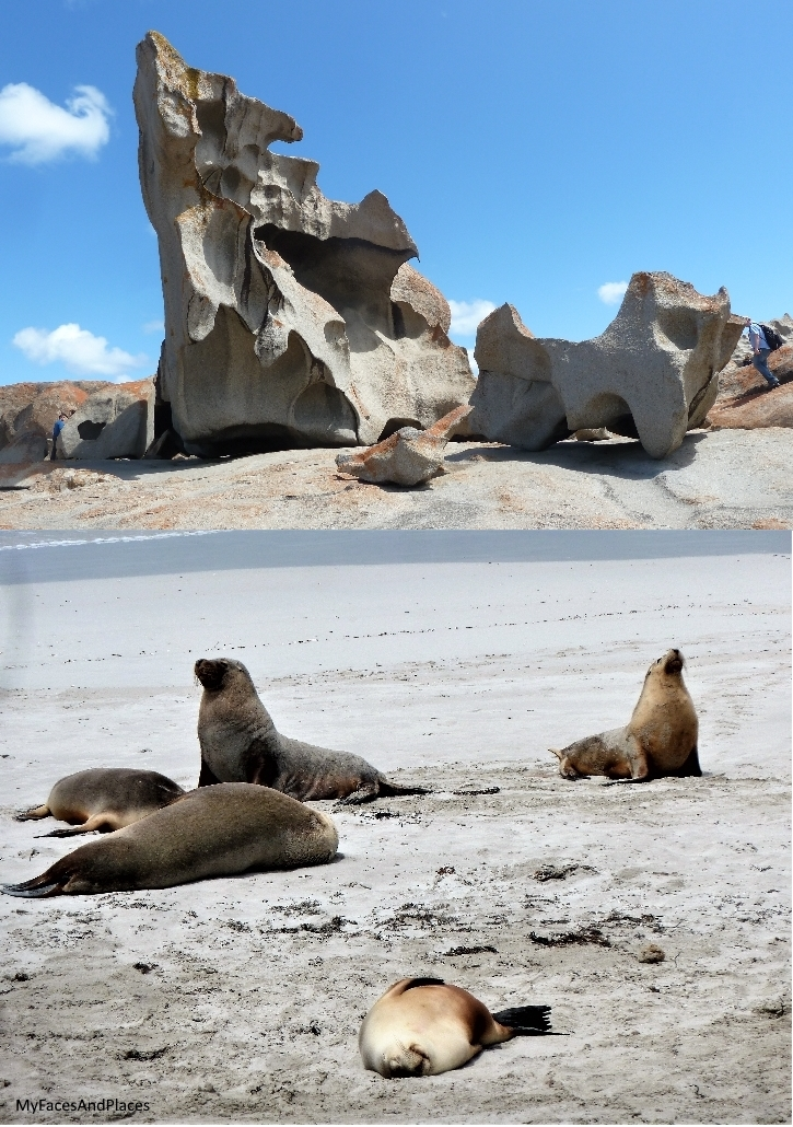 An awesome rock formation sculptured by nature at Remarkable Rock; and Sea Lions lazing on the beach at Seal Bay Conservation Park