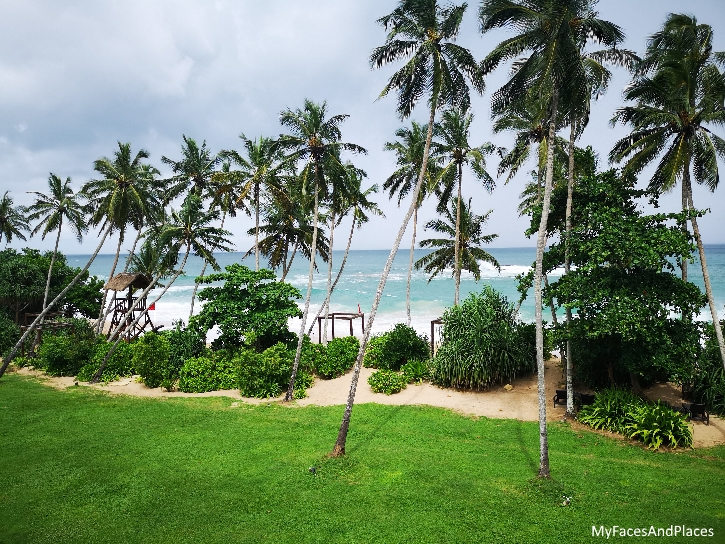 Palm-fringed sandy beach with nature at its best…what's not to like?