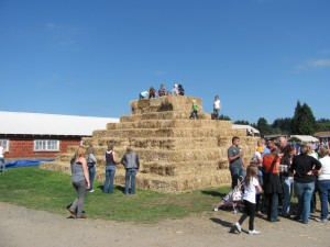 bi-zi farm hay pyramid pumpkin patch