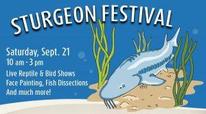 sturgeon festival