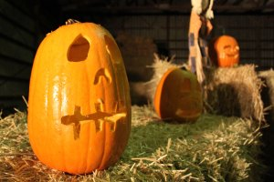 vancouver pumpkin patch