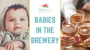 babies in the brewery