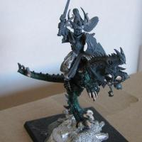 Dark Elves: Dreadlord on Cold One