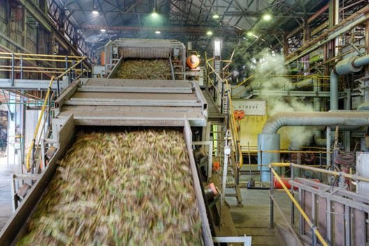 Processing of sugarcane in a sugarcane mill