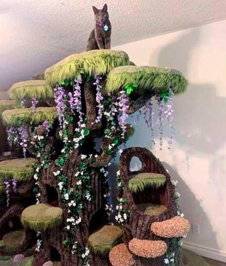 необычный домик для питомцев