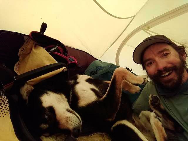 собака спала вместе с альпинистами в палатке