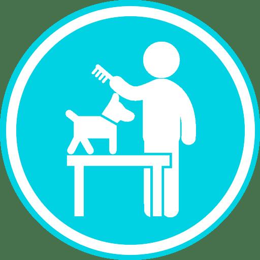 стрижка животных
