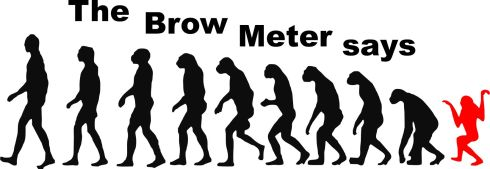 The Brow Meter
