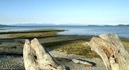 Vancouver Island 7