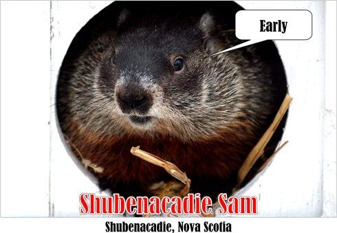 shubenacadie-sam