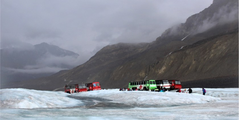 COLUMBIA ICEFIELD on the ice 6