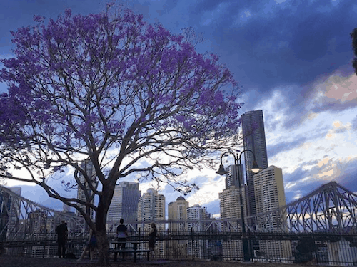 Best Brisbane Sunset - Wilson Lookout