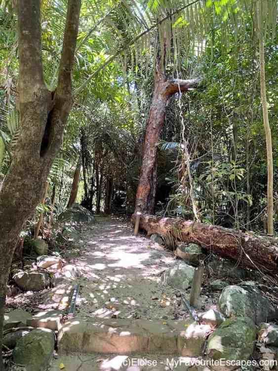 Ulysses Link Walking Track