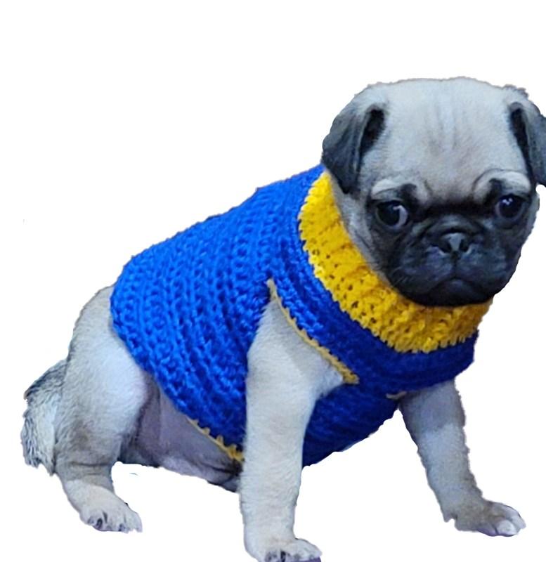Pug Puppy Sweater