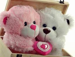 cute teddy love whatsapp dp images