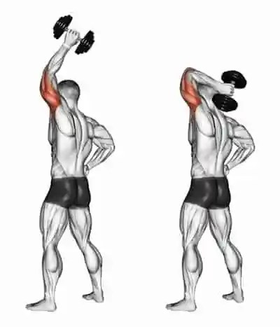 one arm overhead tricep extension - myfitfreak