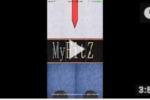 MyFitZ Gource