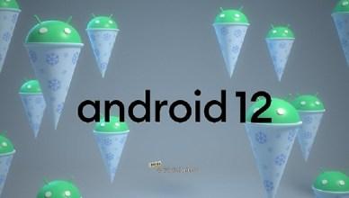Android 12系統正式版釋出 Pixel 6系列手機搶先搭載