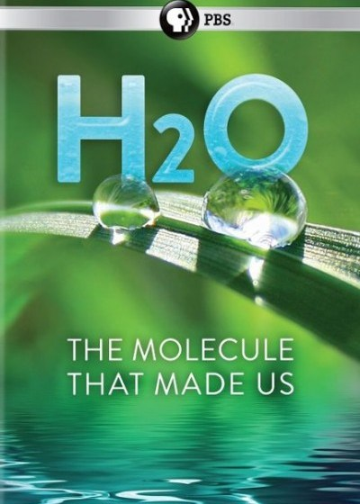 myfoodistry - traditional cooking and modern inspiration - h2o the molecule that made us