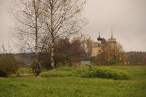 Деревня Воронич