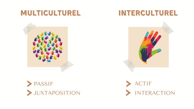 multiculturel interculturel