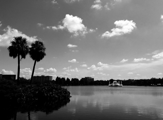 A Lake in Downtown | Buy Now