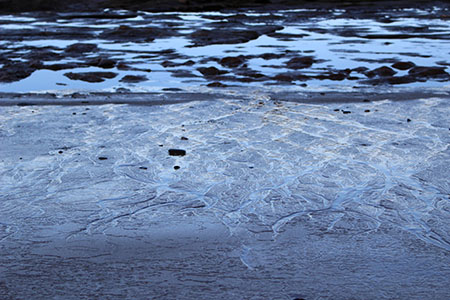 Otter crest low tide traces