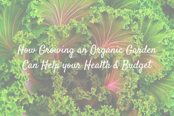 Growing an Organic Garden