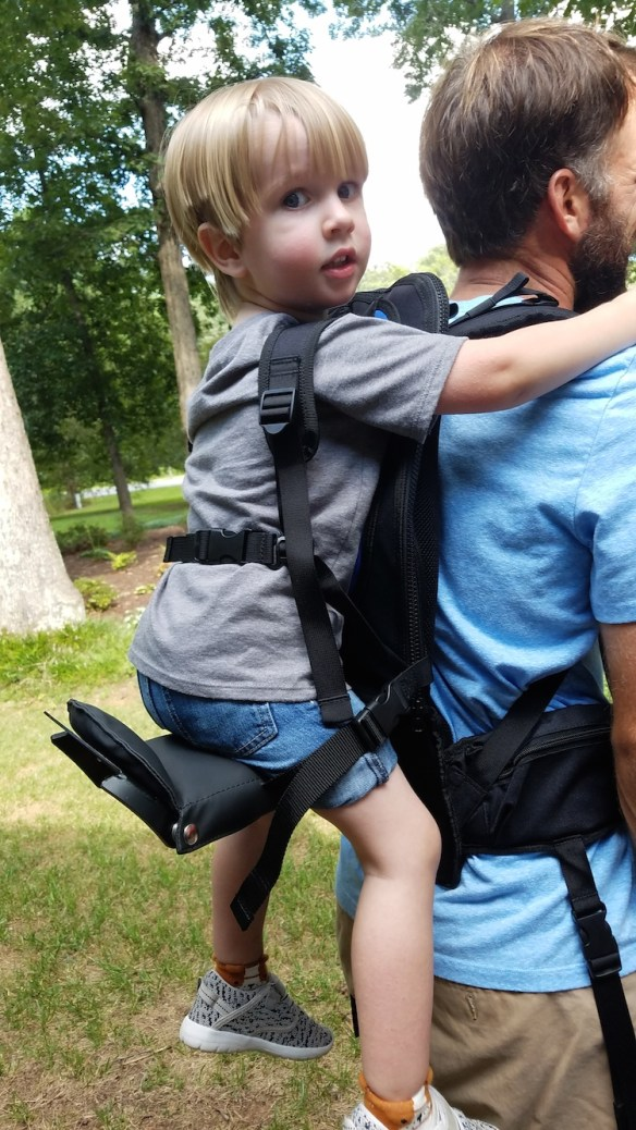 Freeloader Toddler Carrier