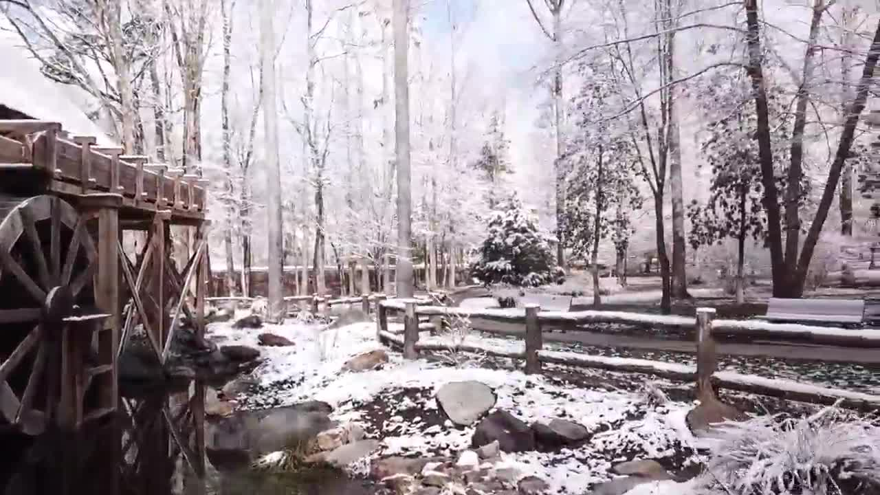 SkyView8 captures a beautiful view of the snow at Bicentennial Garden in Greensboro.