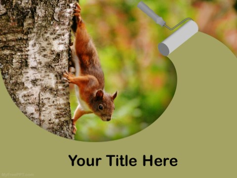 Free Brown Squirrel PPT Template