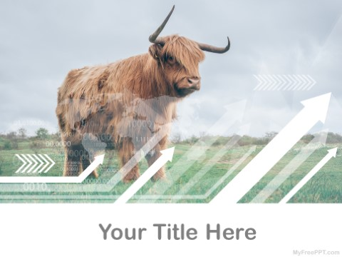 Free Bull PPT Template