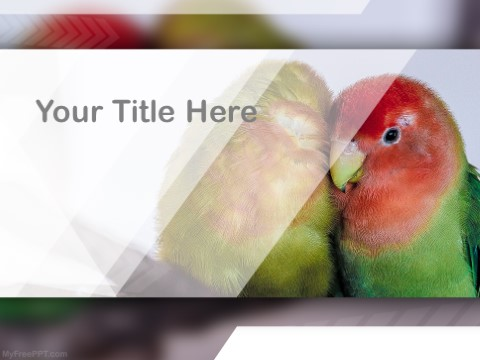 Free Caiques PPT Template