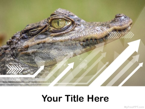 Free Crocodile PPT Template
