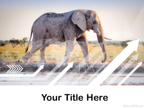 Free Elephant PPT Template