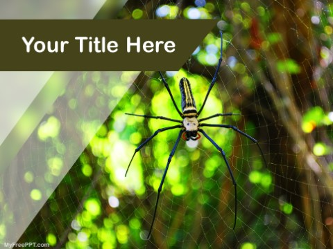 Free Forest Spider PPT Template