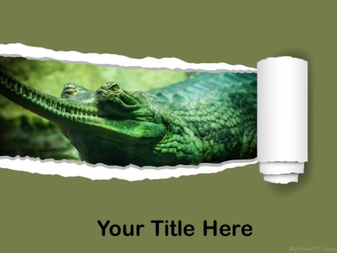 Free Gharial PPT Template